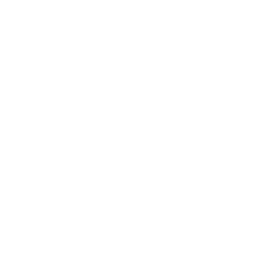 Vivian Doan Montreal Natural Light Portrait Photographer logo